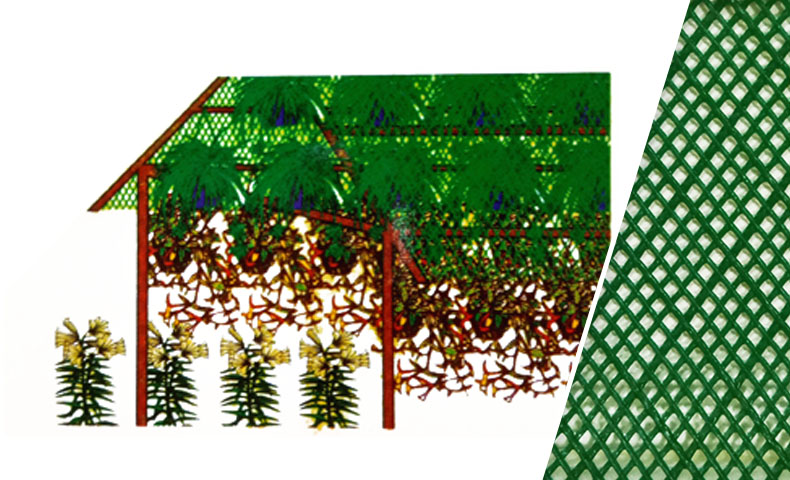 Shading Net for Flower & Vegetable Farm